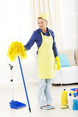 Young woman with house cleaning tools and supplies — Stock Photo