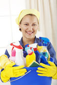 Cheerful woman holding cleaning equipment — Stock Photo