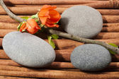 Oval river's stones with a sprig of flowers. — Stock fotografie
