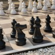 The board of chess in the garden. — Stock Photo