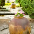 Stock Photo: Clay amphorstanding in garden.