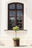 большие темные деревянные окна в стене дворца. — Стоковое фото