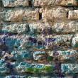 Bricks wall painted in different paint. — Stock Photo #33369013