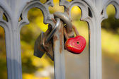 Padlock in the shape of hearts, red metal heart,. — Stock Photo