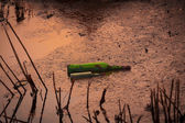 Green bottle lying in the pond. — Stock Photo