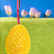 Yellow big Easter egg hanging on purple ribbon on blue and green — Stock Photo