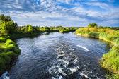 Turbulent river. — Stock Photo