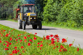Poppies growing right near the asphalt road, a tractor driving on th — Stock Photo