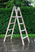 Wooden ladder on the backyard — Stock Photo