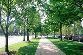Philadelphia sokakta — Stok fotoğraf