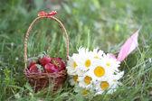 Chamomiles and strawberries — Stock Photo