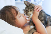 Child is kissing a cat — Stock Photo
