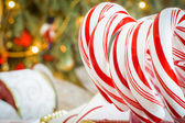 Christmas peppermint candy canes — Stock fotografie