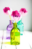 Pink tulips in colorful vases on white background — Stock Photo