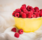 Raspberries in a bowl — Stock Photo