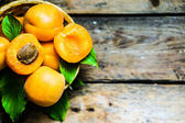 Apricots on rustic wooden background — Stock Photo