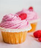 Raspberry muffins — Stock Photo