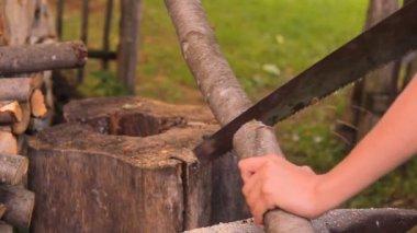 Um brennholz sah, sah ein baumstamm die hand — Stockvideo