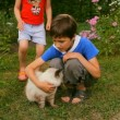 Boy and girl, brother and sister, children petted the cat in nature — Stock Video #28451933