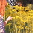 Girl among the yellow flowers of dill smiles — Stock Video