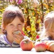 Two girls with apples, eat talk — Stock Video