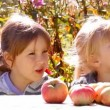 Two girls with apples, eat talk — Stock Video #31562549