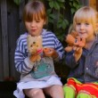 Two girls eating apples, playing dogs toys — Stock Video #31670427