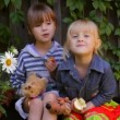 Two girls eating apples, playing dogs toys — Stock Video #31673429