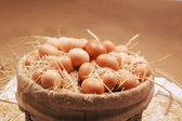 一堆的褐色鸡蛋在白色背景上的巢 — 图库照片