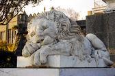 Mármol león — Foto de Stock