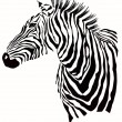 Animal illustration of zebra silhouette — Stock Vector
