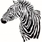 Animal illustration of zebra silhouette — Stock Vector