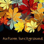 Autumn leaf chestnut collection — Stock Vector