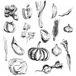 Hand drawn vegetables set — Stockvektor #32694155