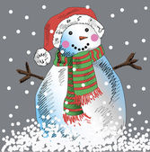 Vector snowman with grey background. — Stock Vector