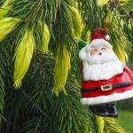 Santa Claus hanging on Christmas Tree — Stock Photo #35302555