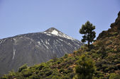Teide volcano — Stock Photo