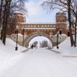 "Stock Photo: Figured bridge in museum-reserve ""Tsaritsyno"""