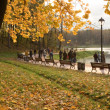 Foto Stock: A park in autumn.
