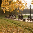 A park in autumn. — Foto Stock