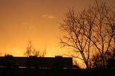 Günbatımı şehir. — Stok fotoğraf