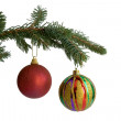 The fir-tree branch with  christmas balls — Stock Photo