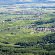 Panoramic aerial view the Upper Rhine plain in Alsace, France — Stockfoto