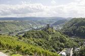Вид реки Мозель и Коберн Гондорф в Германии — Стоковое фото