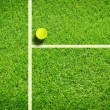 Tennis on grass — Stock Photo