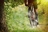 Mountain bike race — Stock Photo