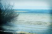 Onde sul lago — Foto Stock