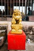 золотой китайский лев — Стоковое фото
