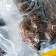 Foto de Stock  : Fishes in Plastic Bag