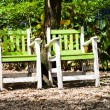 Stock Photo: 2 chairs in garden